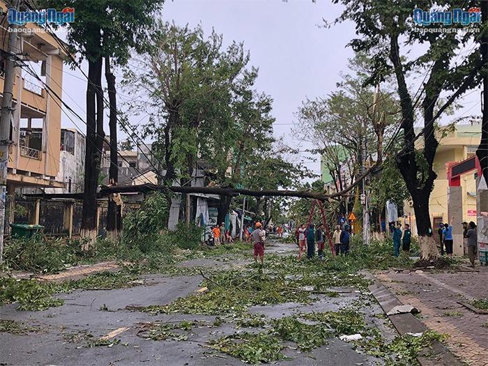 Các cây lớn bị ngã đổ đè lên đường dây điện trên đường Phan Đình Phùng
